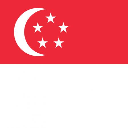 British Tutors Singapore